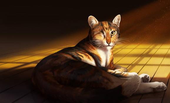 Pet portrait for patitomuerto