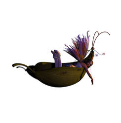 Fae Stock PNG