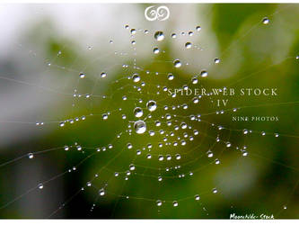 Spider Web Pack IV Stock by Moonchilde-Stock