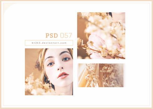 PSD 057