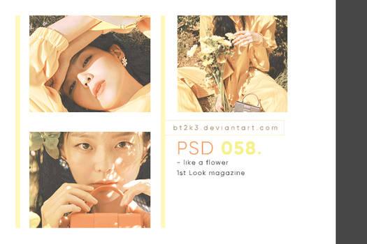 PSD 058