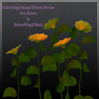 Yellow Flowers by BrokenWing3dStock