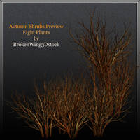 Autumn Shrubs by BrokenWing3dStock