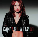 Cant Be A Tamed Font