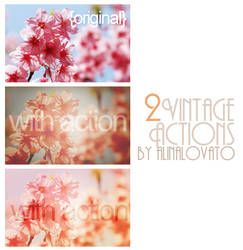 Vintagee 65th Action