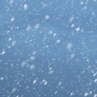 Brush -Snow by jeffkingston