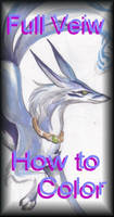 How to Colouring Toutoral