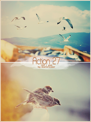 Action 27 + PSD