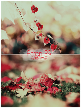 Action 29 + PSD