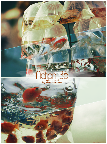Action 36 + PSD by diastereomer