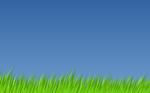 tango grass