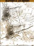Shattered-Glass Brushes