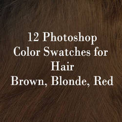 Photoshop Hair Color Swatches by Lissa-loo