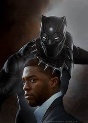Black Panther vs This Guy (Idk his name)