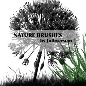 HIGH RES Nature Brushes by Julliversum