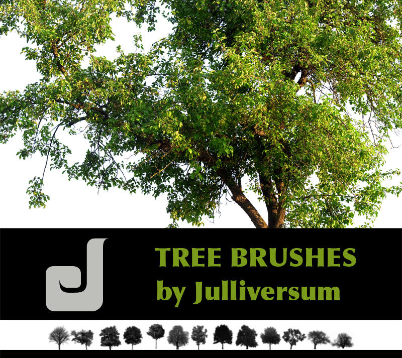 HIGH RES Tree Brushes by Julliversum