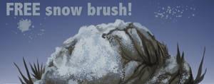 FREE Snow Brush!