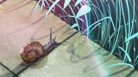 Snail Likes Rain