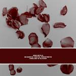Rose Petals PS7