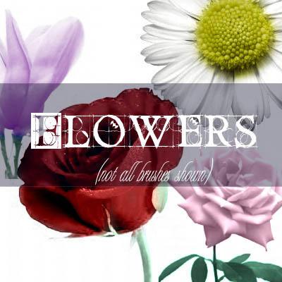 Flower Set by digital-amphetamine