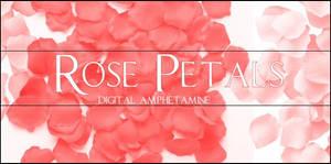 Rose Petals -- psp8