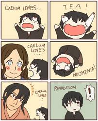 [Meme] Caelum Loves Revolution