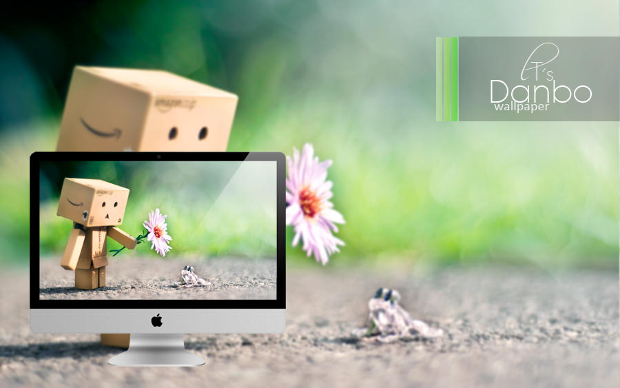 Free Danbo Wallpaper by Lady-Tori