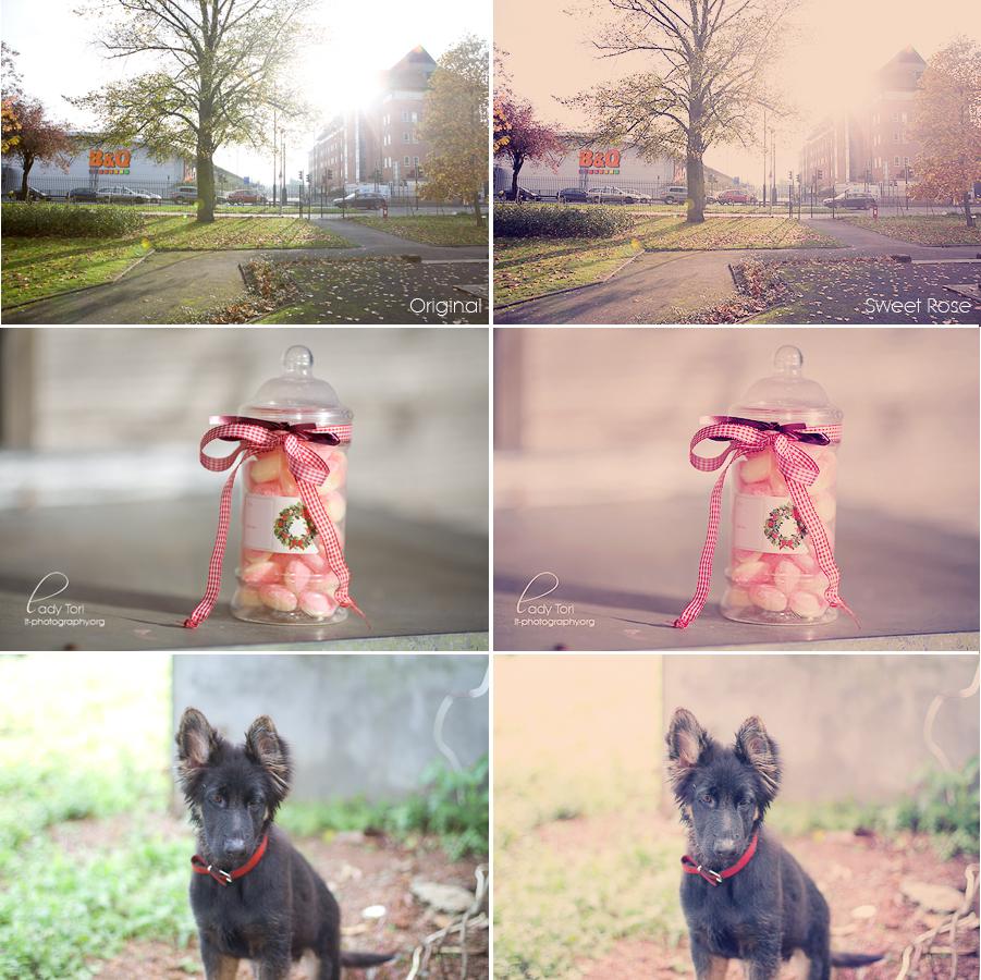 Sweet Rose Photoshop Action FREE