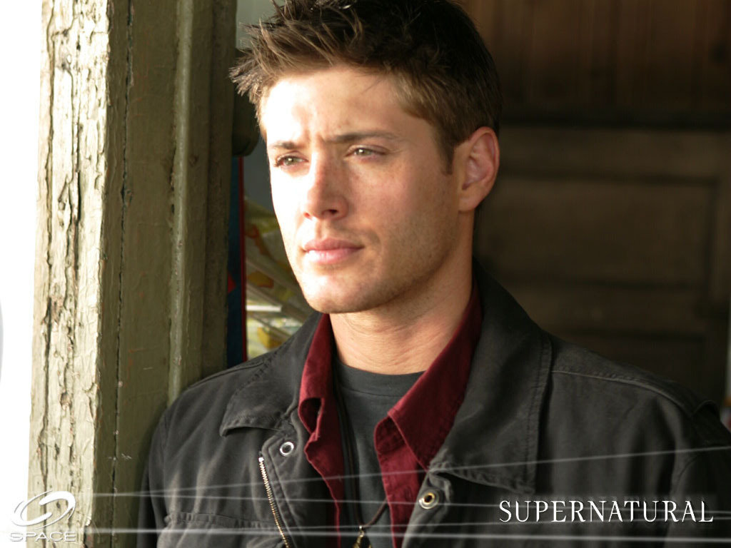 Temporary Bliss (Dean Winchester X Reader) by Miss-Union-Jack on