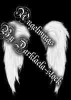 Angel Wings by Darklaela-stock