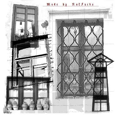 Window Brushes by RotFuchs
