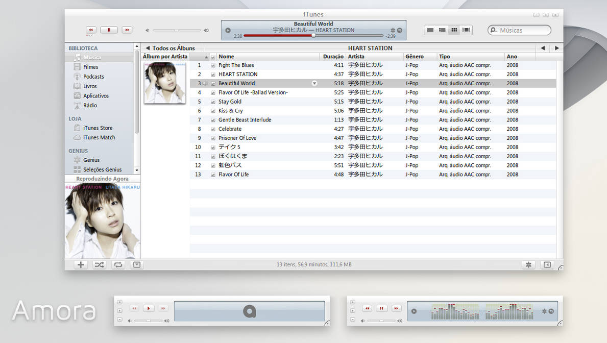 Amora iTunes 10 for Windows by 1davi