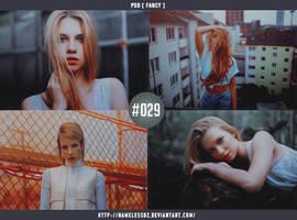 PSD #29 Fancy