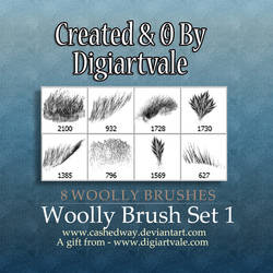 Woolly brush set 1 by cashedway