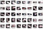 Mongrel's Hands 01