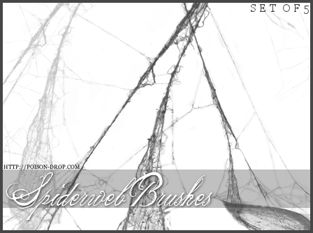Spiderweb Brushes by poisondropstock on DeviantArt