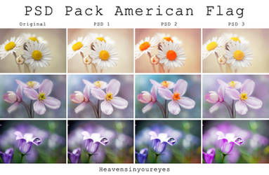 PSD PACK American Flag Effects.