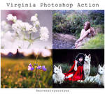 Virginia Photoshop Action (DOWNLOAD FOR FREE)