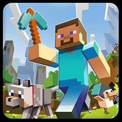 Minecraft Icon - Win7