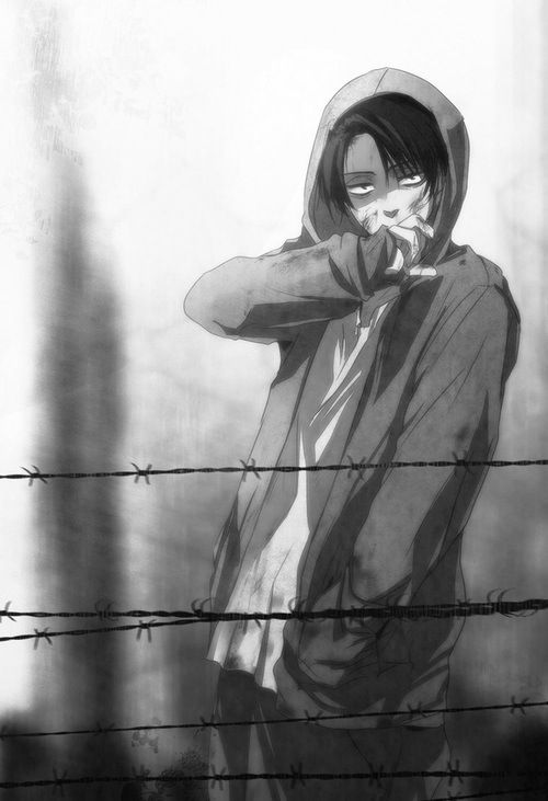 Animals (Stalker!Levi X Reader) AU by Greystream on DeviantArt