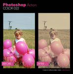 Photoshop Action - Color 022