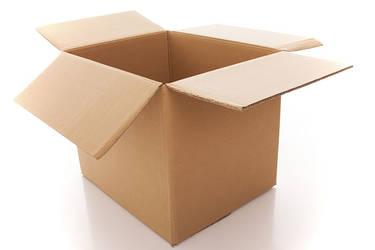 Mettaton In A Frisk Brand Cardboard Box