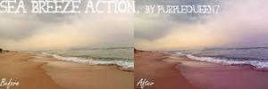 Sea breeze Action