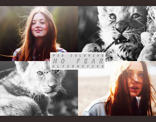 psd | no fear || by Alternxtive