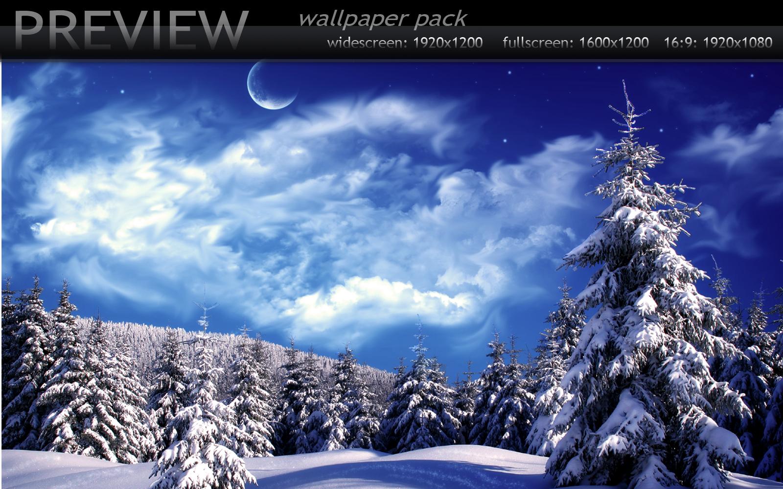Winter Wonderland vol.3
