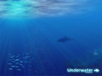 Underwater by javierocasio