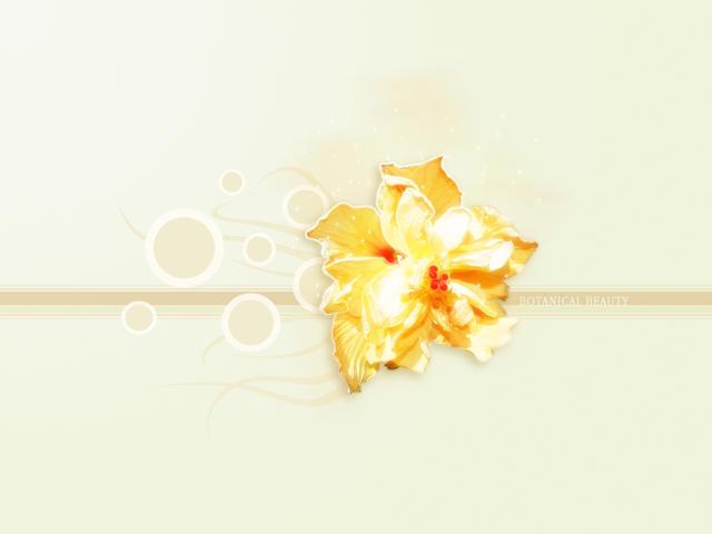 Botanical Beauty by javierocasio