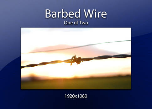 Barbed Wire upon a Sunset