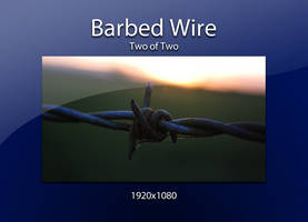 Barbed Wire up close by htmlcheeta