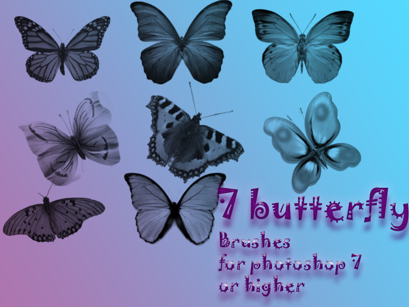 7 butterfly brushes